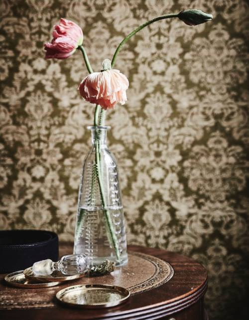 Decorate your house with cut flowers