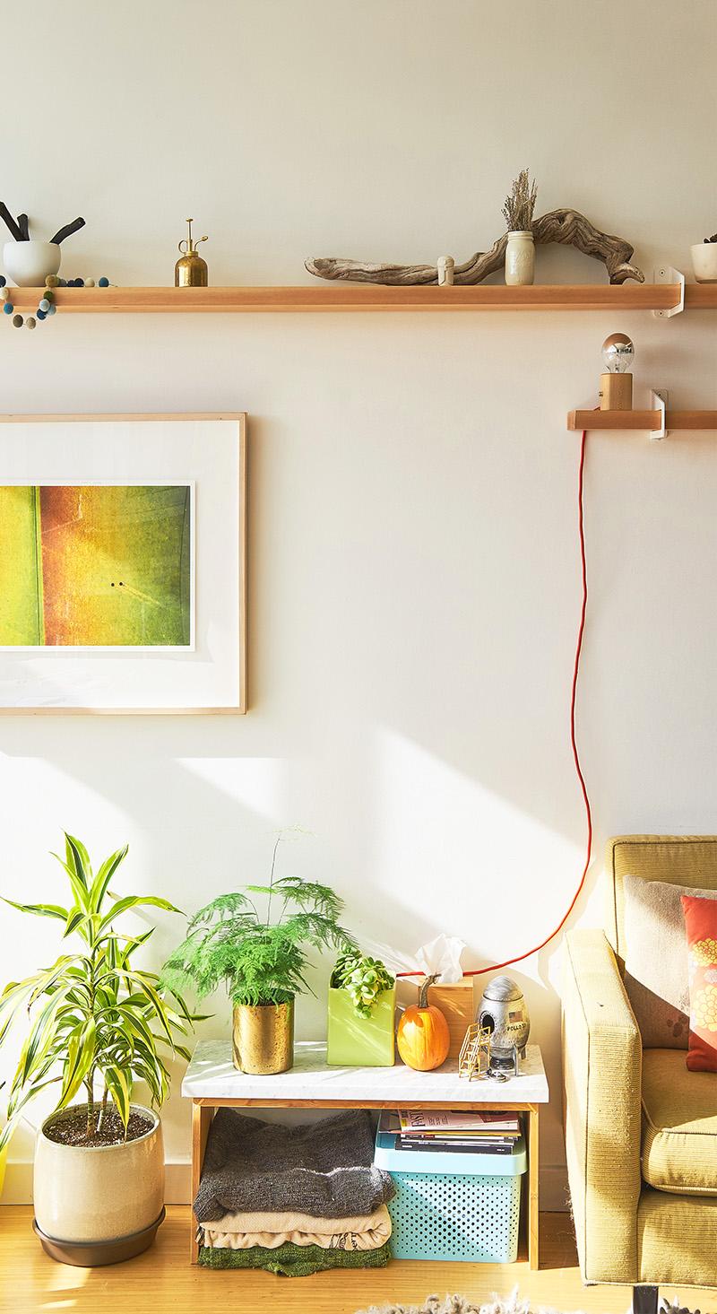 shelf in a living room
